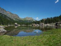 lago selva