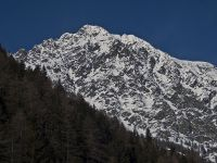 monte-faroma