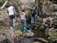 pesca-in-torrente